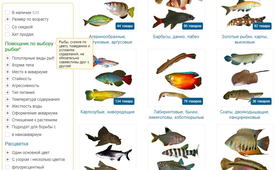 Фильтр раздела пресноводных рыбок